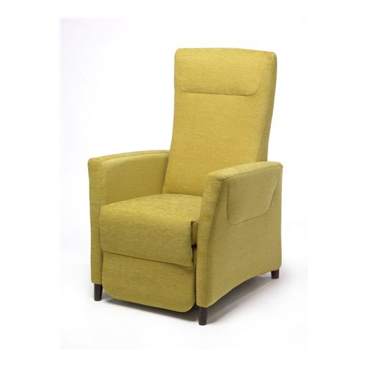 250 fauteuil